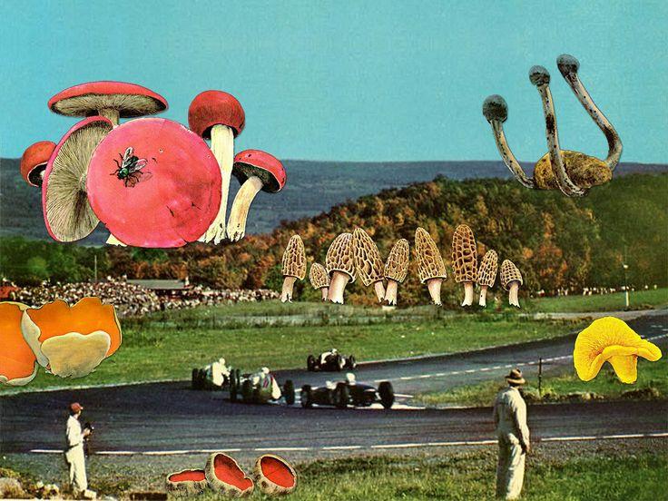The Spaghetti Moons And Disco Ball Boyfriends Of Collage Artist Eugenia Loli   The Creators Project