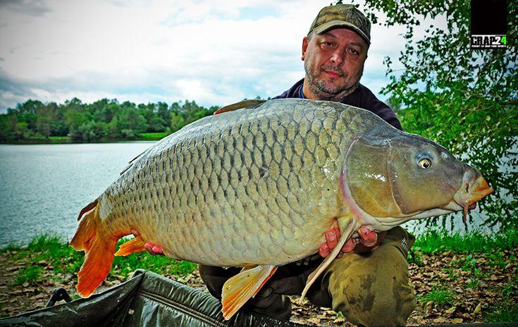 """Cătălin Toader, pentru www.crap24.ro: """"Există mai multe soluții pentru a încerca selectarea crapilor mari ai lacului, iar una dintre ele, poate cea mai la îndemână, este chiar...""""  Detalii și FOTO AICI >>> http://www.crap24.ro/?p=5234"""