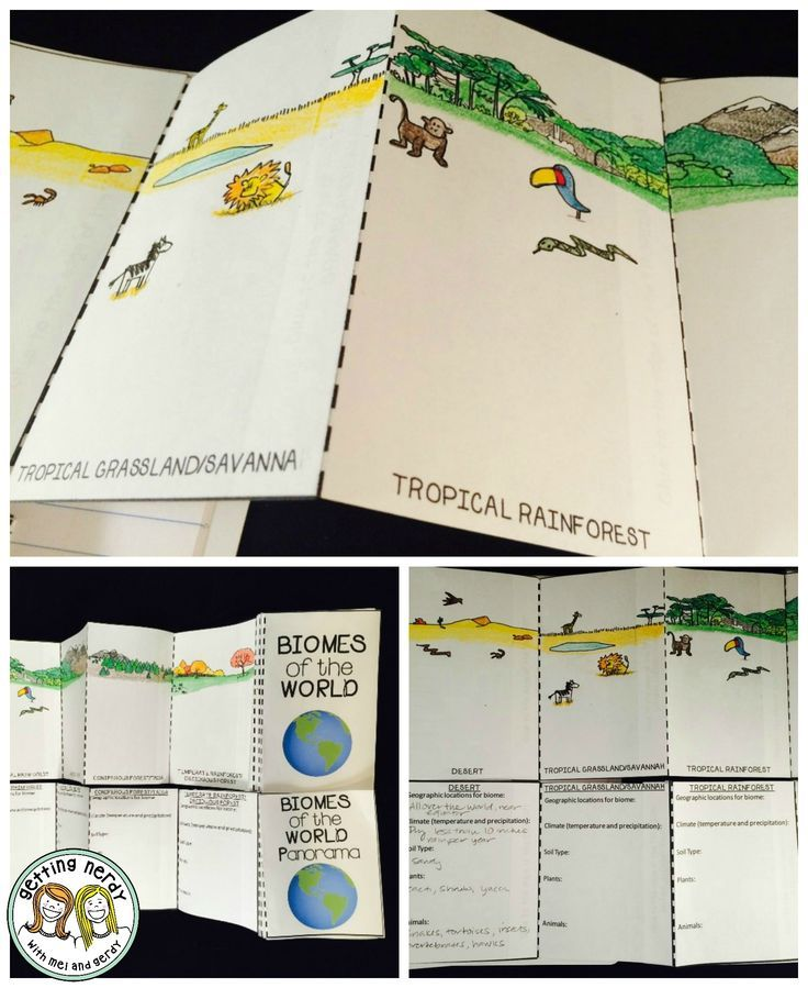 Biomes of the world fold out- students fill in with animals and plants and describe soil type, average temp and precipitation, et