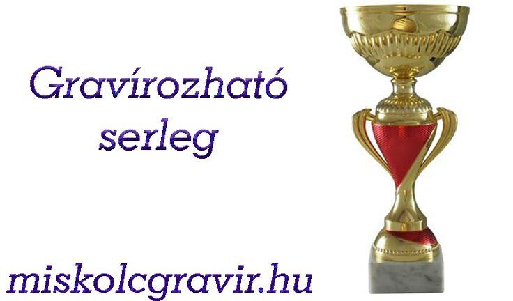 Serlegek és üvegplakettek gravírozása Miskolcon. http://miskolcgravir.hu/lezeres-gravirozas/gravirozhato-uvegplakettek-serlegek