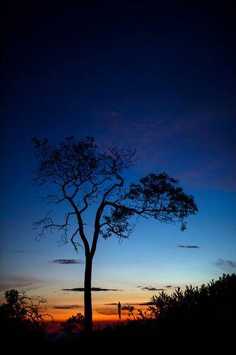 Merbabu Sunset 2
