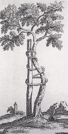 Symbol for orthopedics - Nicolas Andry