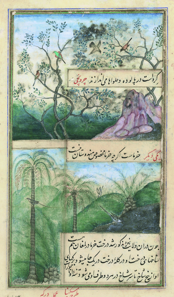 Date Palms and Chirunjri Trees  by Askina and Durga, Mughal India 1589.