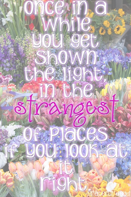 Sublime Jpg Sayings: 138 Best Cute And Funny Quotes Images On Pinterest