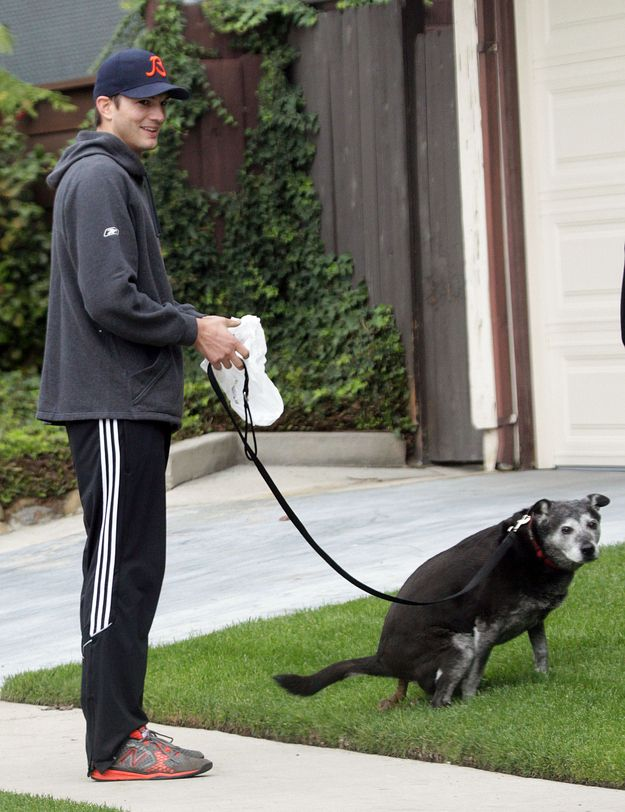 Great Picture Of Ashton Kutcher And His Dog #cleanitup