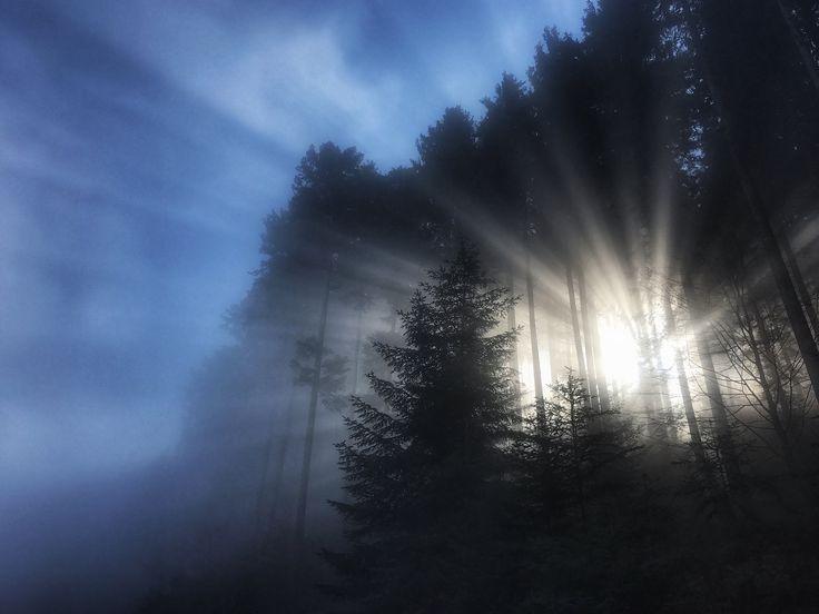 https://flic.kr/p/Rxyw4L | CH AR Appenzeller Vorderland | Zwischen Nebel und Sonne