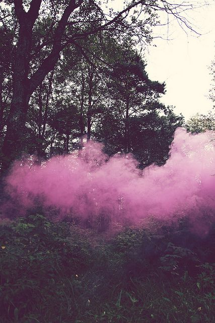 pink fog | • Wild nature • | Pinterest | Pink
