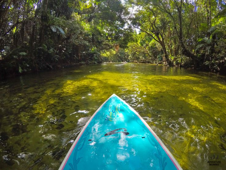 Somewhere up a Lazy River - SUP boarding on the Mossman River with Windswell
