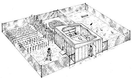 """""""Self-fertilizing"""" Chicken coop/garden"""