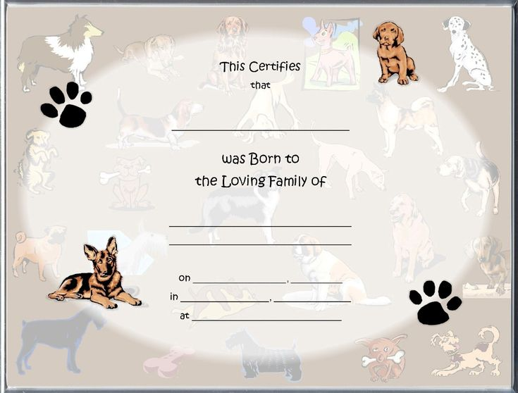 Free Pet Birth Certificate Template