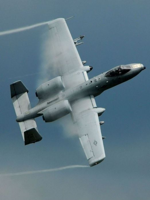 "Thunderbolt II, the ""Warthog"""