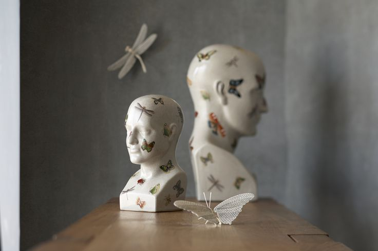 Butterfly phrenology heads and wire butterflies.