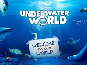 I love to visit the Sunshine Coast - attraction - UnderWater World  #airnzsunshine