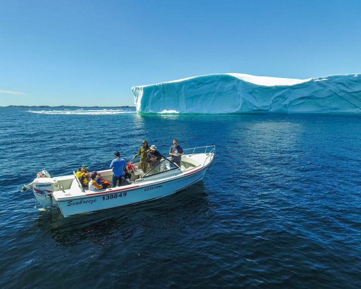 Newfoundland - Getting up close and personal with icebergs