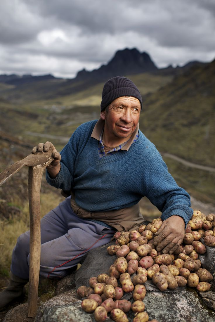 Finding the Faces of Farming: A Peruvian Potato Harvest. Note the smile on this man's face... I truly believe he is happy!