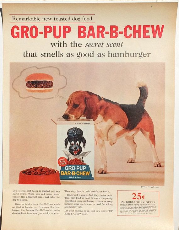 1962 Beagle and Poodle Dog Gro-Pup Bar-B-Chew dog food advertisement. This is a full page ad from a magazine. Measures 14 inches by 10 inches. In excellent condition. Perfect for framing. A fun collectible or gift for a Beagle owner or for a Poodle owner!  Buy as many vintage ads as you like, but pay shipping for only one. When you order one advertisement, all additional ads on the same order ship free!  We carefully package your ads with cardboard to keep them safe during shipping.