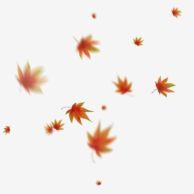 Floating Maple Leaf Fall Red Hand Drawn Maple Leaf Clipart Floating Maple Leaf Falling Red Leaves Png Transparent Clipart Image And Psd File For Free Downloa How To Draw Hands Fall