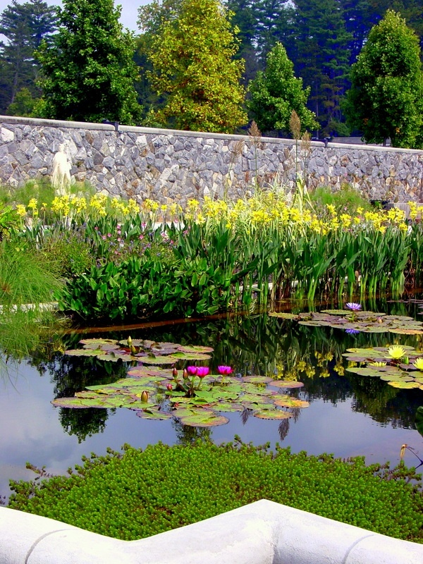 37 Best Images About Biltmore Estate Italian Garden On