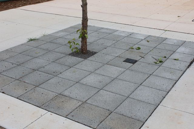 HydroSTON permeable concrete pavers used for tree surrounds at Lawson South Estate, ACT, Australia.
