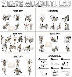 7 Days Workout Plan - Full Body Fitness Training Leg Arm Back Ab - PROJECT NEXT - Bodybuilding & Fitness Motivation + Inspiration