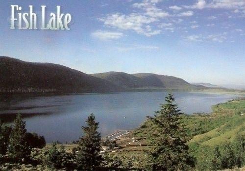 Fish lake utah fish lake utah utah pinterest for Fish lake utah