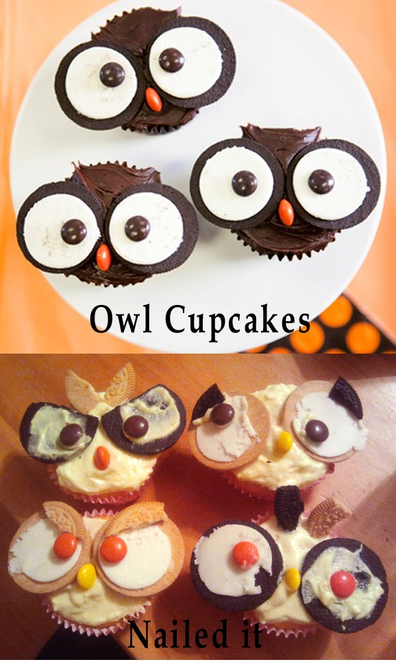 owl cupcakes  nailed it