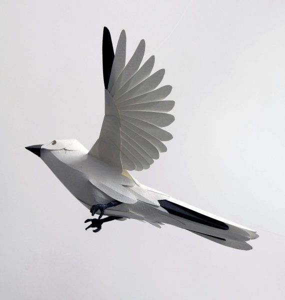 white paper finch #paper #finch #wings #flight: Paper Cut, Beautiful Birdi, Art Crafts, Finch Sculpture, Paper Art, Paper Birds, Paper Flowers, White Paper, Paper Finch