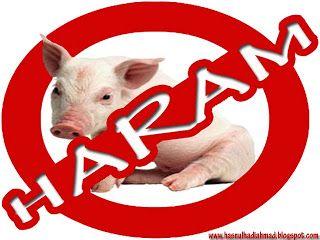 5 alasan jangan makan babi
