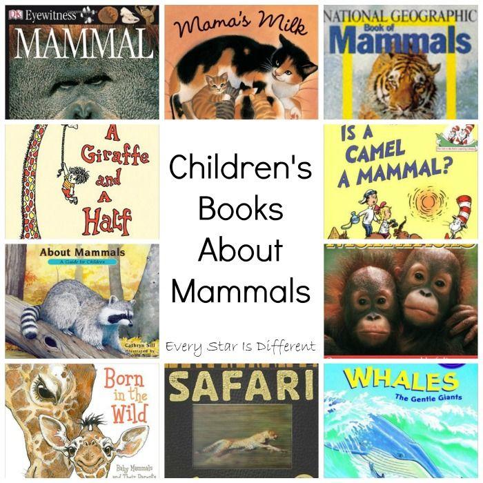 Zoo Animals on Desert Animals Crafts For Preschoolers
