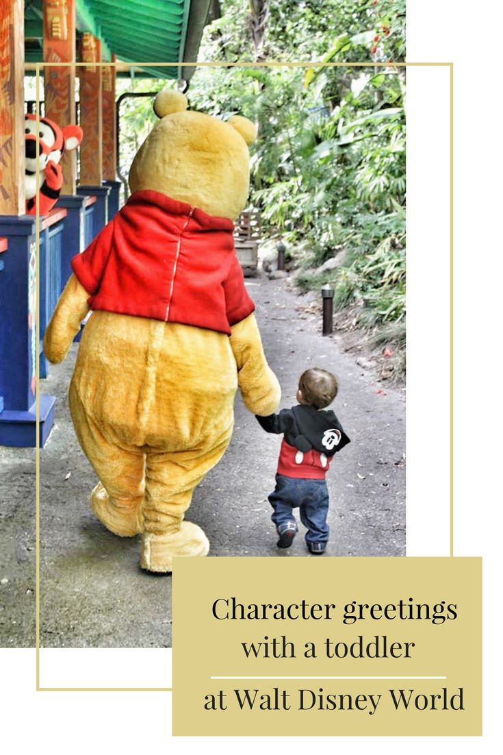 Tips for a successful character greeting experience with a toddler at Walt Disney World - click to learn more!