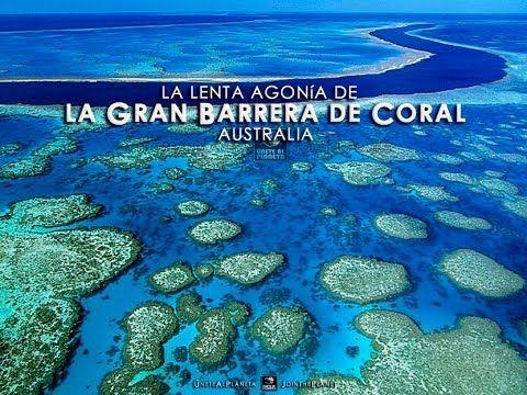 La Gran Barrera de Coral de Australia, una de las 7 maravillas naturales y Patrimonio de la Humanidad.