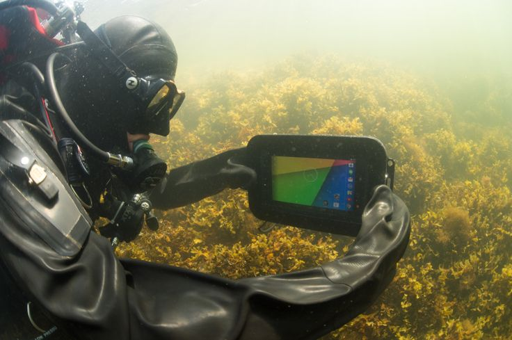 Underwater tablet Alltab used in research purpose in the Baltic Sea
