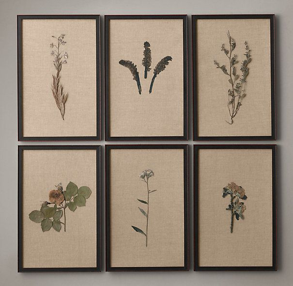 Hand-Pressed Botanicals on Linen Ivory ~ This wouldn't be a hard look to duplicate. 6 frames at Hobby Lobby on one of their 50% off sales, and one Home Depot dropcloth... and go out with the kids to pick some stuff to press in books. Mount them together.... voila.