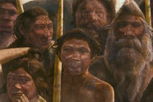 Oldest Human DNA Reveals Mysterious Branch of Humanity