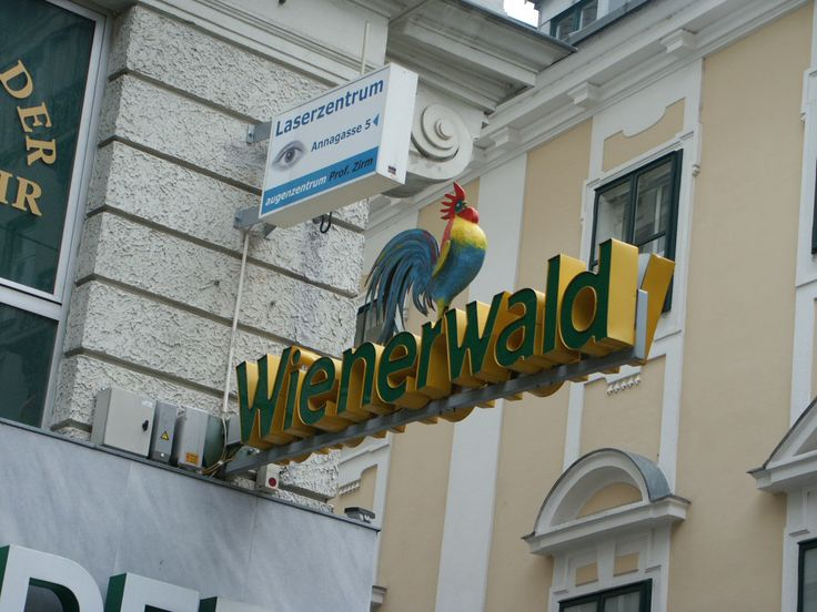 www.damwid.pl