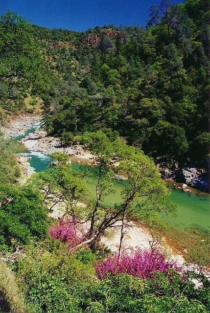 One of my favorite places in the world, the Yuba River in California - hope I can see it again in this lifetime.