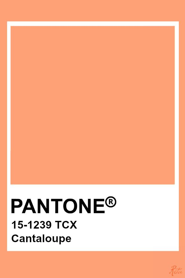 Pin On Color Me Nice Pantone Cantelope, also known more commonly as cannalope kush, is a sativa dominant hybrid cantelope is infamous among patients for its delicious flavor that is just like a fresh slice of ripe cantalo. pin on color me nice pantone