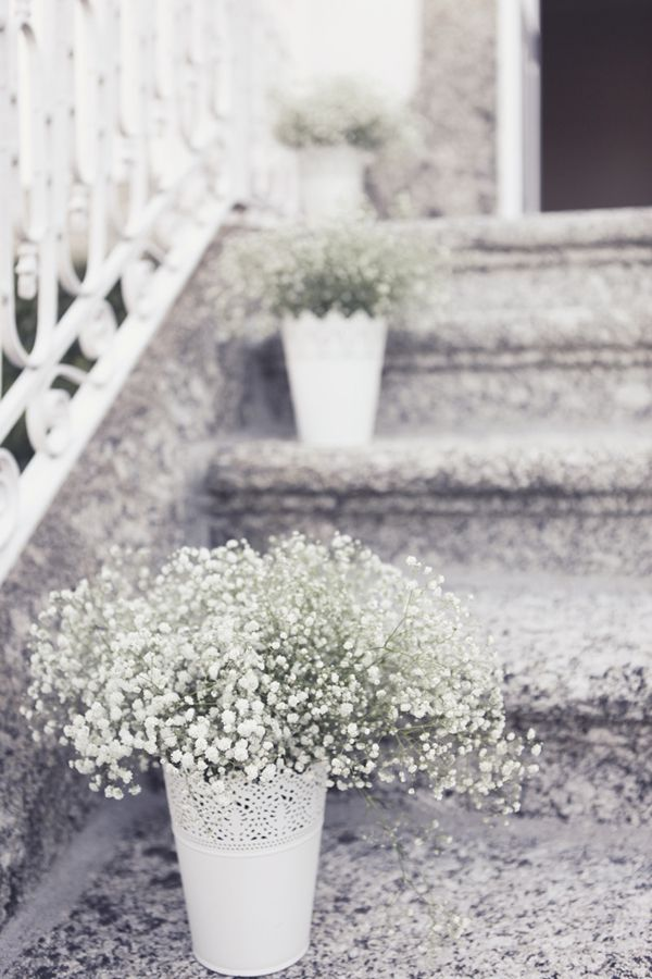 Babys breath in white vases from Ikea - might be nice for fall