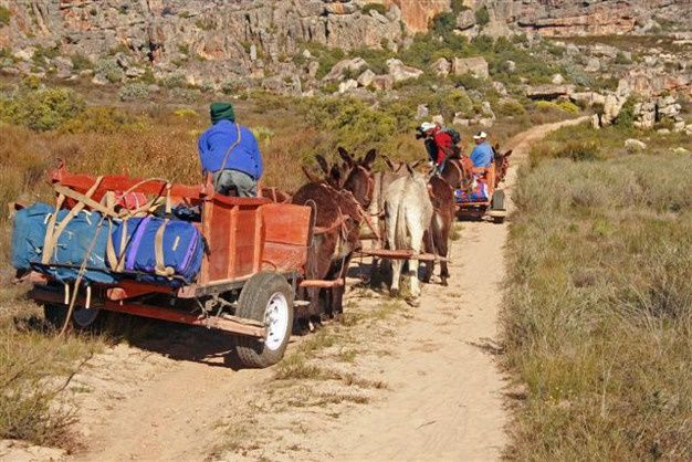 Five family-friendly slack packing trails in South Africa.