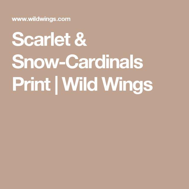 Scarlet & Snow-Cardinals Print | Wild Wings