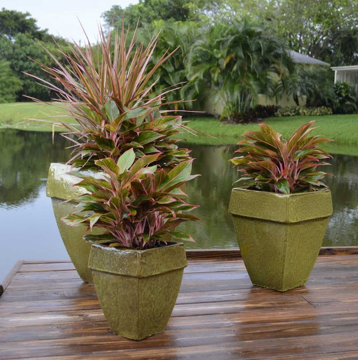 26 Best Images About New Trends In Garden Containers On