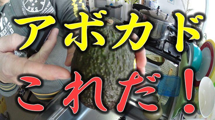 美味しいアボカド選びのコツ お笑いクッキング 【ハウツー】