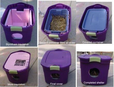 ¿Tienes gatos callejeros en tu patio trasero? Puedes mantenerlos calientes este invierno: | 26 trucos que harán más fácil la vida de cualquier dueño de un gato