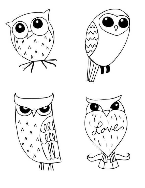 How to draw owls 3