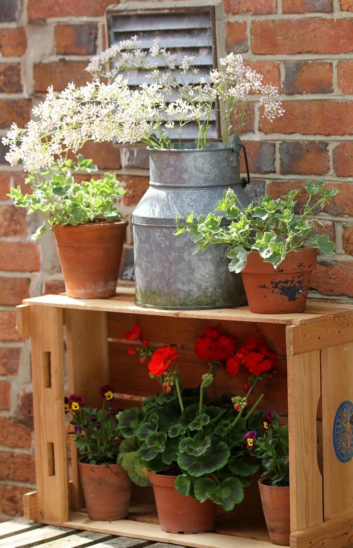 Wooden Crate Garden Wooden Crates Garden Wooden Crates