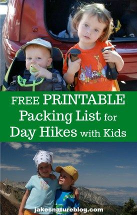 11 Essential Items To Bring On A Day Hike With Kids  2da3461d78fc