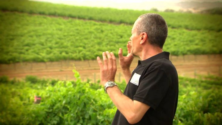 Simon Bryant talks about Thomas Foods Stage 3 from a food perspective - ...