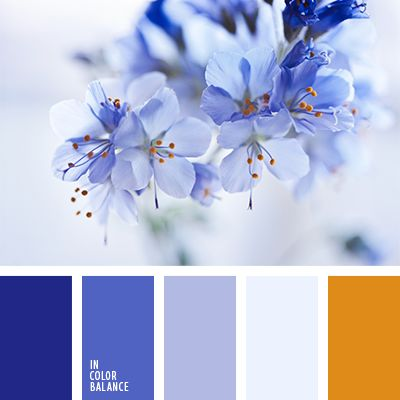 Harmonie de fleurs bleues I Design I Couleur I Inspiration I Camaïeu I Peinture I