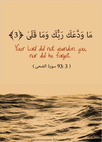 Your Lord did not abandon you, nor did He forget. Quran - Surah Adhuha, 93:3