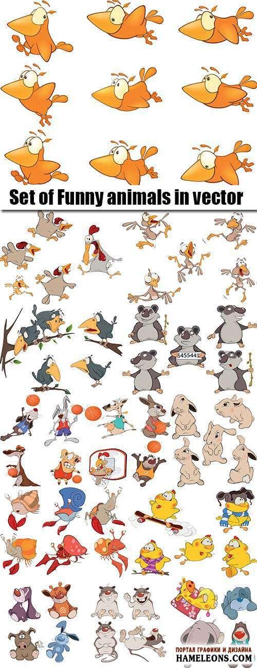Забавные животные и птицы на белом фоне в векторе | Funny animals vector